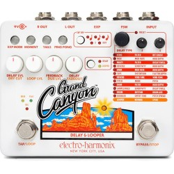 Electro Harmonix Grand Canyon Delay & Looper